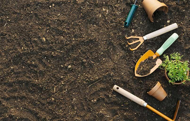 Comment-préparer-et-ameublir-le-sol-pour-le-potage