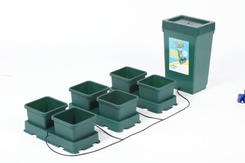 kit hydroponique pour débutant